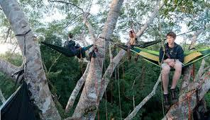 news tagged tree climbing tentsile