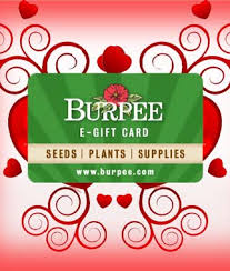 online gift card purchase electronic gift card gardening gifts and garden supplies at