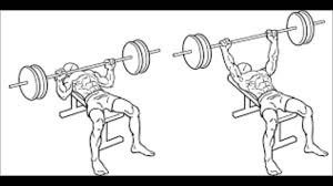 Will Incline Bench Increase Flat Bench Does Bench Press Make Your Arms Bigger What Muscles Are Used For
