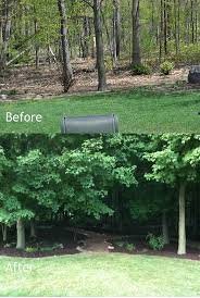 14 best before and after landscaping images on pinterest