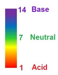 acid rain effects u0026 causes video u0026 lesson transcript study com
