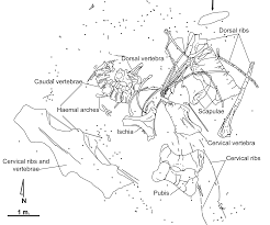 Burgos Spain Map by Europatitan Eastwoodi A New Sauropod From The Lower Cretaceous Of
