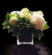white hydrangeas green roses and white hydrangeas in washington dc shoots and
