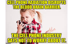 Cell Phone Meme - bn frank cell phone meme activist post