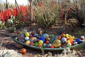 Desert Botanical Garden Chihuly The Amazing Of Dale Chihuly In The Desert Botanical Garden In
