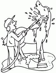 cheval 1 coloriages de chevaux et poneys coloriages enfants biboon