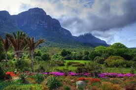 Kirstenbosch Botanical Gardens Petition Stop Using Roundup Herbicide At Kirstenbosch Botanical