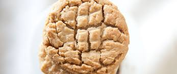 gourmet cookies wholesale wholesale cookie information pacific cookie company