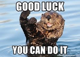 Good Luck Meme - 20 best you can do it memes that are 100 encouraging sayingimages com