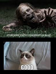 Tard The Grumpy Cat Meme - grumpy cat 3 so mean lol sometimes you just need a good laugh