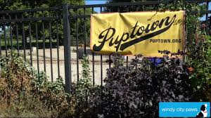 puptown dog park chicago dog friendly area youtube