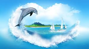 dolphin best background hd 1920x1080 wallpaper wp6404443