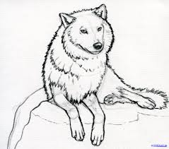 wolf sketch cartoon images
