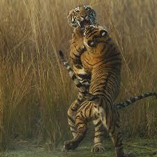 7th global tiger day wwf tigers souvik kundu wwf