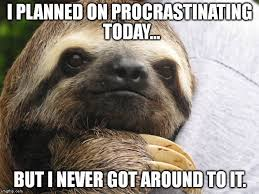 Angry Sloth Meme - funny sloth memes i planned on procrastinating today graphics wall4k