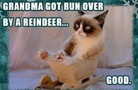 Internet Grandma Meme - hate the holidays with the grumpy cat internet meme socialeyezer