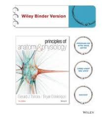 Hole Anatomy And Physiology 13th Edition Principles Of Anatomy And Physiology 14th Edition Free Medworld