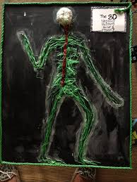 nervous system model science pinterest nervous system body