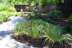 perennial garden plans for shade home outdoor decoration