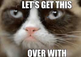 Good Luck Cat Meme - lse students union exams