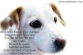 quotes about friendship enduring quotes about pets and friendship homean quotes