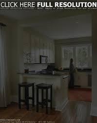 25 Best Small Kitchen Design by Open Kitchen Design For Small Kitchens 25 Best Ideas About Small