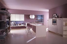 kitchen dazzling cool purple kitchen accessories splendid