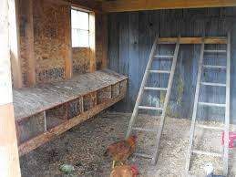 How To Build A Building by Chicken Coop Building Youtube 13 How To Build A Chicken Coop Step