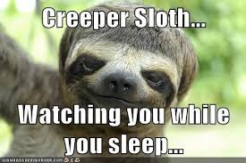 Sloth Whisper Meme - sloth meme tumblr