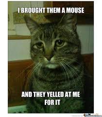 Depressed Cat Meme - depressed cat by recyclebin meme center