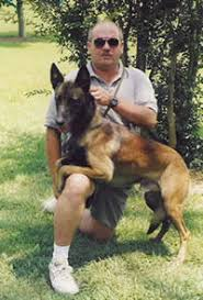 belgian malinois markings belgian malinois breed standard and information c u0027villa rowehaus