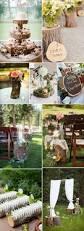 best 25 wedding trees ideas on pinterest holiday wedding themes