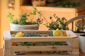 simple luxury 5 easy ways to use herbs this weekend