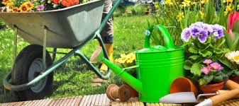 Backyard Improvement Ideas The Cheapest Improving Backyard Ideas U2014 Home Blogger Com