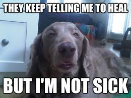 Sick Puppy Meme - they keep telling me to heal but i m not sick 10 dog quickmeme