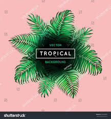 Exotic Theme Vintage Abstract Vector Tropical Background Green Stock Vector