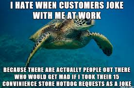 Turtle Meme - i didn t know what meme to use so have a sea turtle meme on imgur