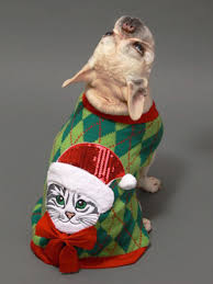 how to make an ugly christmas sweater for your dog hgtv