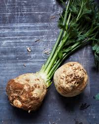 Celery Root Vegetable - roots and tubers glossary martha stewart
