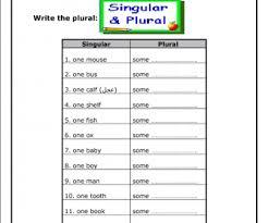 singular and plural noun worksheet worksheets