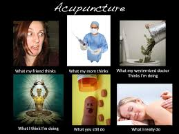 Acupuncture Meme - image 259271 what people think i do what i really do know