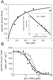 natural proteolytic release of a soluble form of human il 15