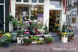 flower shops in flower shop amsterdam the netherlands pictures free use image