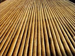 furniture marvelous eco forest bamboo flooring bamboo floating