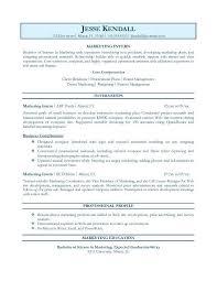 sap bi developer resume sample scarlet letter short essay