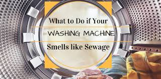 basement smells like gas what to do if your washing machine smells like sewage