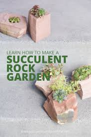 How To Make Rock Garden Cold Hardy Succulent Rock Garden Succulents And