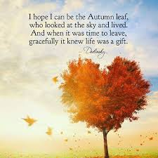 53 most amazing autumn quotes and sayings about autumn fall season