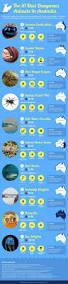 Best 25 Reddit Australia Ideas On Pinterest Dream Vacations
