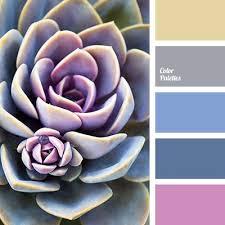163 best u2022 u2022color palette u2022 u2022 images on pinterest colors brown